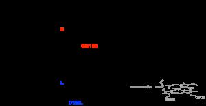 TOC-Asp132